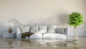 water damage cleanup marysville, water damage restoration marysville, water damage repair marysville